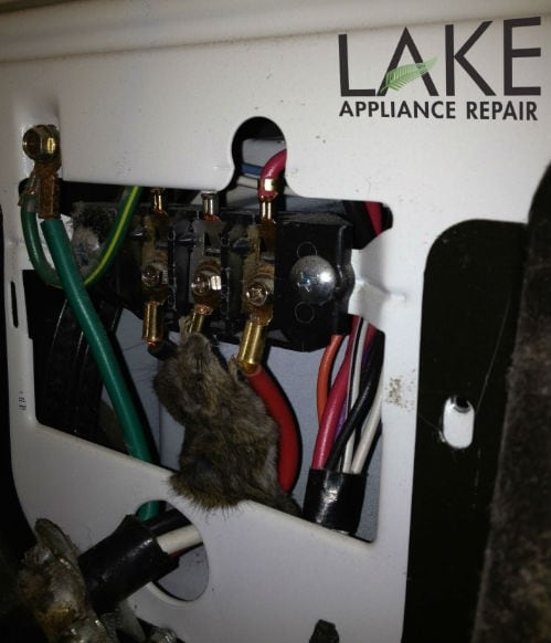 How To Keep Rodents Out Of Appliances